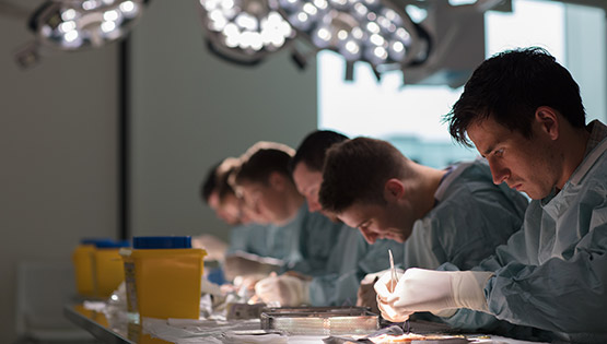 Surgical trainees in wet lab